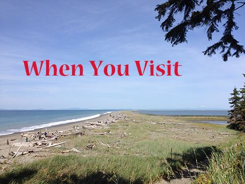 When you visit - photo of Dungeness Spit